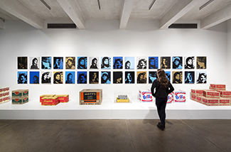 Warhol gallery - photo credit Dean Kaufman